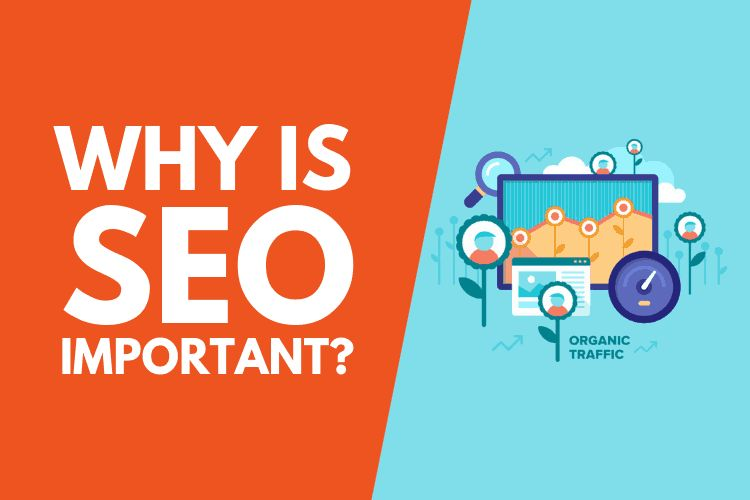Why-Is-SEO-Important-For-Your-Business